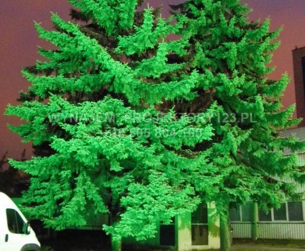 Wynajem naświetlacza architektonicznego (dekoracja światłem drzew)