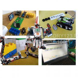 PROJEKTORY123.PL - wynajem strefy LEGO